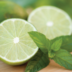 Mint Leaf & Lime